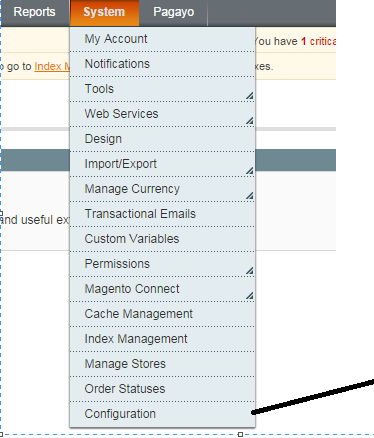 magento shopping cart issue